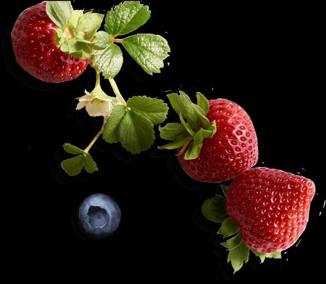 Chocolate Strawberry Basket